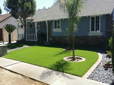 Artificial Grass Photos: Artificial Grass Carpet Leisure City, Florida Home And Garden, Front Yard Ideas