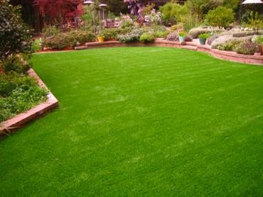 Artificial Grass Photos: Artificial Grass Carpet South Daytona, Florida City Landscape, Backyard