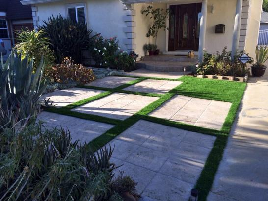 Artificial Grass Photos: Artificial Grass Carpet Southeast Arcadia, Florida Backyard Deck Ideas, Front Yard Ideas