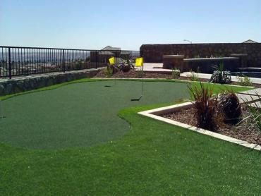 Artificial Grass Photos: Artificial Grass Carpet Winston, Florida Roof Top