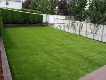Artificial Grass Photos: Artificial Grass Installation Wekiwa Springs, Florida City Landscape, Backyard