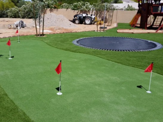 Artificial Grass Olympia Heights, Florida Putting Green, Backyard Makeover artificial grass