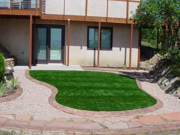 Artificial Lawn Bloomingdale, Florida City Landscape, Front Yard Landscaping Ideas artificial grass