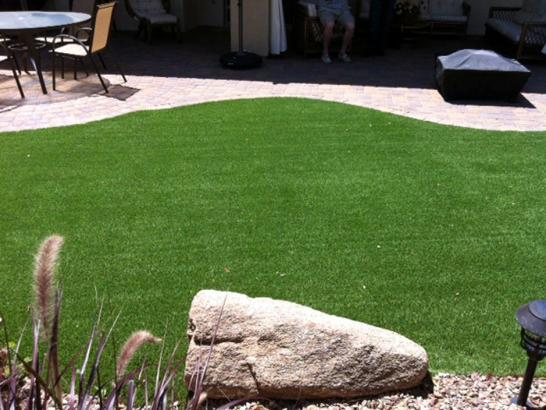 Artificial Grass Photos: Artificial Lawn North Port, Florida Artificial Grass For Dogs, Backyard Ideas