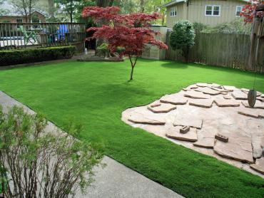 Artificial Grass Photos: Artificial Turf Cost Beverly Hills, Florida Home And Garden, Backyard Landscaping Ideas