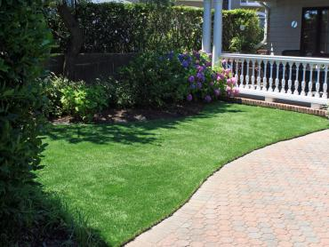 Artificial Turf Cost Wahneta, Florida Gardeners, Front Yard Design artificial grass