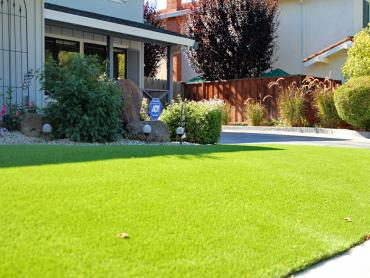 Artificial Grass Photos: Artificial Turf Destin, Florida Lawn And Garden, Front Yard