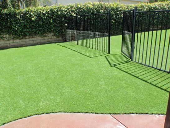 Artificial Grass Photos: Artificial Turf Heathrow, Florida Dog Grass, Landscaping Ideas For Front Yard