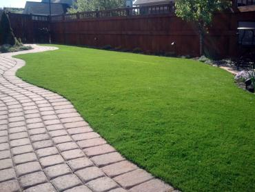 Artificial Grass Photos: Artificial Turf Installation Palm River-Clair Mel, Florida City Landscape, Backyard Landscaping Ideas