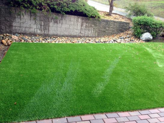 Artificial Grass Photos: Artificial Turf Installation Sun City Center, Florida Lawn And Garden, Small Backyard Ideas