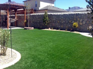Artificial Grass Photos: Artificial Turf Oakland Park, Florida Paver Patio, Beautiful Backyards