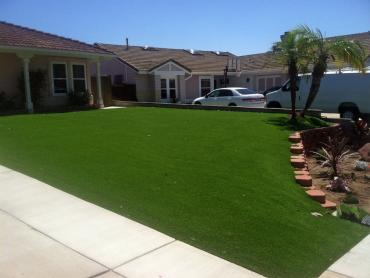 Artificial Grass Photos: Artificial Turf Ocoee, Florida Lawns, Front Yard Landscaping