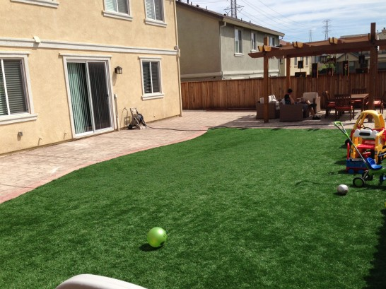 Artificial Grass Photos: Artificial Turf The Hammocks, Florida Lawn And Garden, Beautiful Backyards