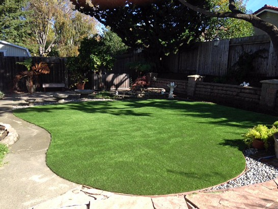 Artificial Grass Photos: Artificial Turf The Villages, Florida Rooftop, Backyard Landscaping