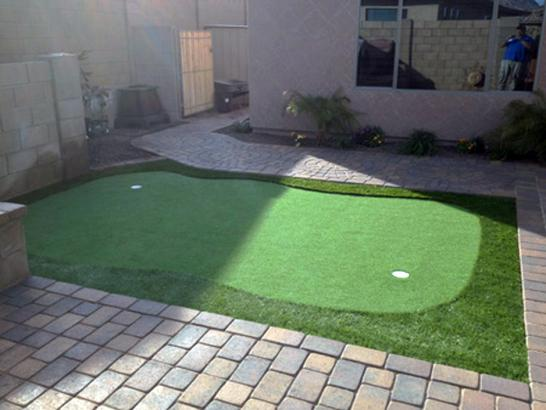 Artificial Grass Photos: Artificial Turf Vero Beach, Florida Diy Putting Green, Backyard Landscape Ideas