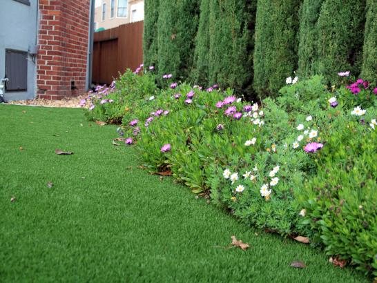Artificial Grass Photos: Best Artificial Grass Bithlo, Florida Backyard Playground, Small Front Yard Landscaping