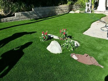 Artificial Grass Photos: Best Artificial Grass Homestead, Florida Lawn And Landscape, Front Yard Landscaping Ideas