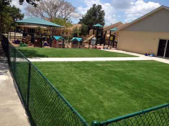 Artificial Grass Photos: Best Artificial Grass Shady Hills, Florida Landscape Design, Commercial Landscape