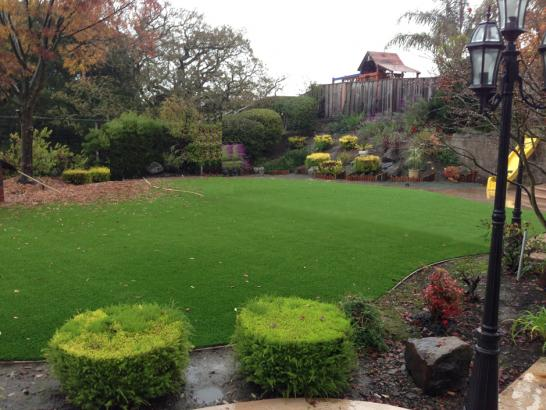 Artificial Grass Photos: Best Artificial Grass South Bradenton, Florida Backyard Playground, Backyard Landscaping Ideas