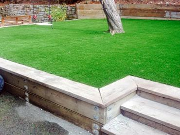 Artificial Grass Photos: Best Artificial Grass South Miami, Florida Garden Ideas, Backyard Design
