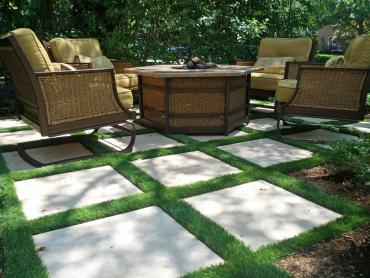Artificial Grass Photos: Fake Grass Apopka, Florida Backyard Playground, Backyards