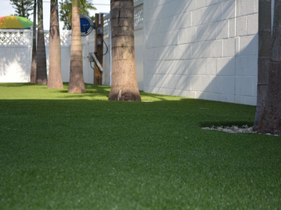 Artificial Grass Photos: Fake Grass Carpet Opa-locka, Florida Backyard Playground, Commercial Landscape