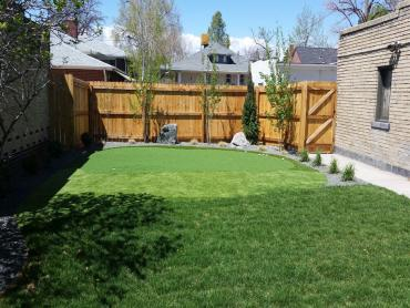 Artificial Grass Photos: Fake Grass Carpet Pebble Creek, Florida Landscaping, Small Backyard Ideas