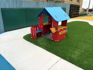 Artificial Grass Photos: Fake Grass Carpet Safety Harbor, Florida Indoor Playground, Commercial Landscape