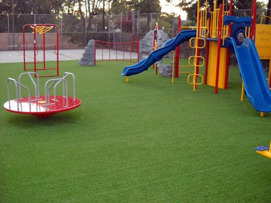 Artificial Grass Photos: Fake Grass Carpet South Gate Ridge, Florida Landscaping, Parks