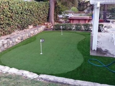 Artificial Grass Photos: Fake Grass East Milton, Florida Landscaping, Backyard Landscaping