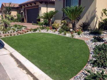 Artificial Grass Photos: Fake Grass New Port Richey East, Florida Garden Ideas, Front Yard Landscaping Ideas
