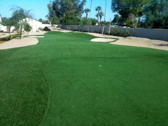 Artificial Grass Photos: Fake Grass Plant City, Florida Lawn And Landscape