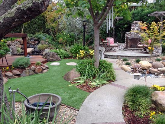 Artificial Grass Photos: Fake Lawn Carrollwood, Florida Landscape Photos, Backyard Ideas