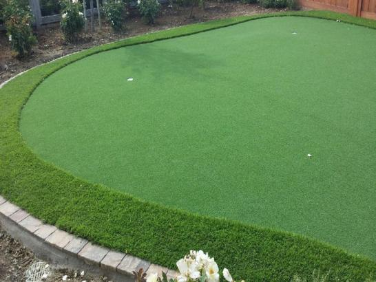 Artificial Grass Photos: Fake Lawn Rockledge, Florida Home And Garden, Backyard Design