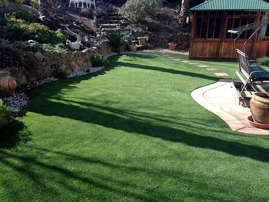 Artificial Grass Photos: Fake Lawn Titusville, Florida Backyard Deck Ideas, Backyard Designs