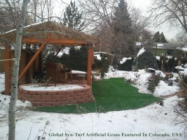 Artificial Grass Photos: Fake Turf Bee Ridge, Florida Backyard Playground, Cold Weather