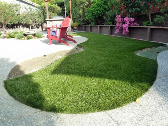 Artificial Grass Photos: Fake Turf Citrus Springs, Florida Hotel For Dogs, Backyard Garden Ideas