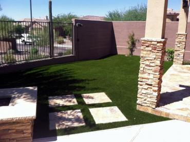 Artificial Grass Photos: Faux Grass Beacon Square, Florida Landscape Design, Backyard Design
