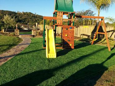 Artificial Grass Photos: Faux Grass Lehigh Acres, Florida Playground, Small Backyard Ideas