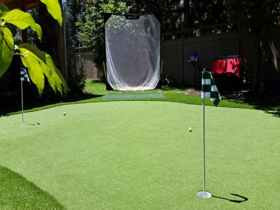 Artificial Grass Photos: Faux Grass Osprey, Florida Design Ideas, Backyards