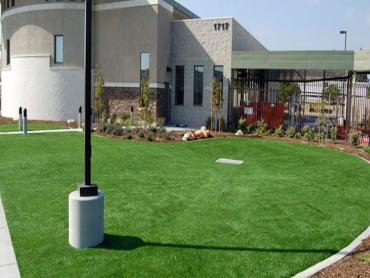 Artificial Grass Photos: Grass Carpet Cutler, Florida Lawn And Garden, Commercial Landscape