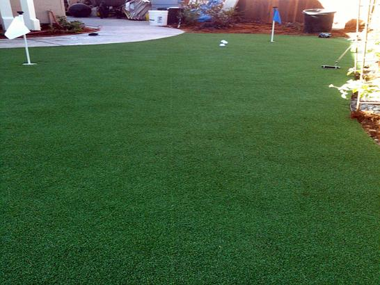 Artificial Grass Photos: Grass Carpet Immokalee, Florida Garden Ideas, Backyard Garden Ideas