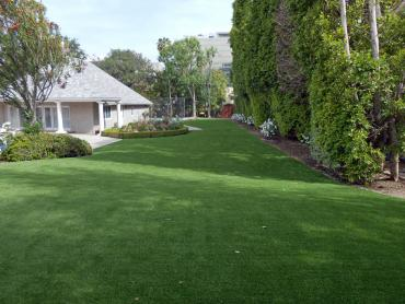 Artificial Grass Photos: Grass Carpet Norland, Florida Dog Hospital, Front Yard Landscape Ideas