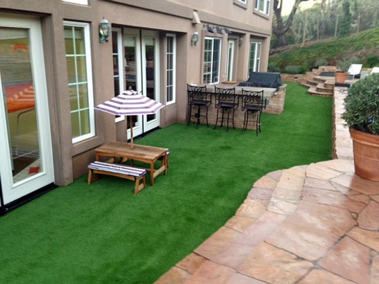 Artificial Grass Photos: Grass Carpet Parkland, Florida Home And Garden, Backyard Landscaping