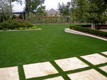 Grass Carpet Willow Oak, Florida Garden Ideas, Backyard Landscaping artificial grass