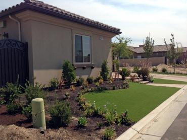Artificial Grass Photos: Grass Installation Lauderdale Lakes, Florida Home And Garden, Small Front Yard Landscaping
