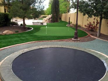 Artificial Grass Photos: Grass Installation Royal Palm Beach, Florida Design Ideas, Backyard Landscaping Ideas