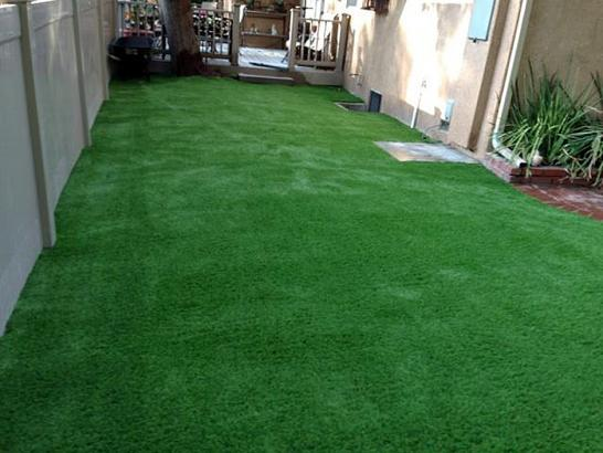 Artificial Grass Photos: Grass Installation Tarpon Springs, Florida Landscaping, Backyard Landscaping Ideas