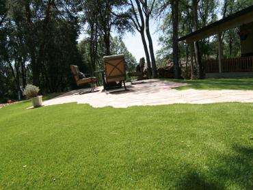 Grass Installation Timber Pines, Florida Landscape Ideas, Backyards artificial grass