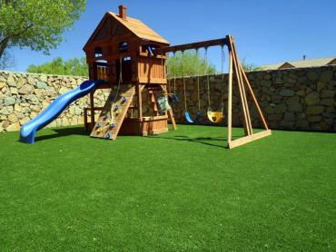Artificial Grass Photos: Grass Turf Citrus Springs, Florida Garden Ideas, Small Backyard Ideas